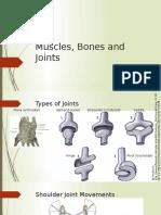 Muscles Bones & Joints