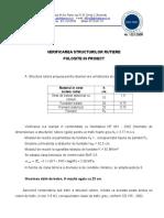 VERIFICAREA STRUCTURII RUTIERE RIGIDE.doc