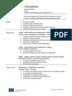 234085218-Joao-Goncalves-CV-Nexus.pdf