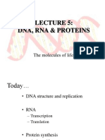 Lec5_DNA