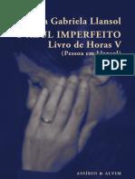 Maria G. Llansol, O Azul Imperfeito
