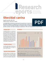AFF-RR Obesidad Canina