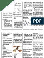Desarrollos Regionales Mariano Santos