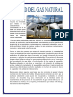 Grupo 6 Gas II Informe