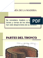 1. Anatomia de La Madera y Tableros Industriales