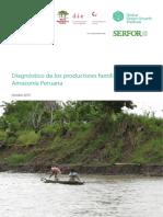 Diagnostico de Los Productores Familiares en La Amazonia Peruana