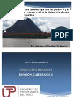 División Algebraica II
