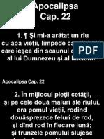 Apoca_22+