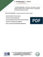 note-situatii-financiare-31-12-2017-Boromir