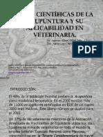 BASES CIENTIFICAS DE LA ACUMPUNRA VETERINARIA.pdf