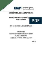 ENDOCRINOLOGÍA-VETERINARIA-Calcitonina-y-parathormona.docx
