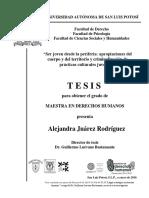 Tesis_DH_SLP.pdf