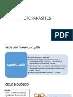 ECTOPARÁSITOS-DIAPOS