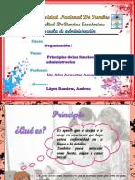 Principios de Las Funciones de La Administracion[1] Andrea