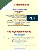 Red Chlamydiales - Predavanje Za 30.5.2007