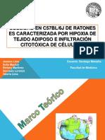 Obesidad FINAL.pdf