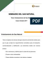 (04) Seminario Del Gas Natural