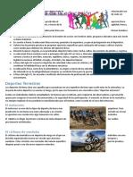 historia de educacion fisica.docx