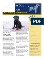 COMM332 Newsletter Final