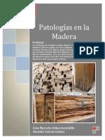 264752172 Patologia en La Madera PDF