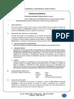 TDR Consultoria Exp Tec __ Carretera CP Nuevo Oriente Tauriyanuna Pallanchaccra
