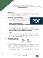 TDR Consultoria Expedeinte Tecnico __ Carretera - Viscas - Pallanchaccra