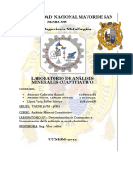 169108243-Determinacion-de-Carbonatos.docx