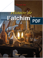Histoire de l' Alchimie-Bernard Joly