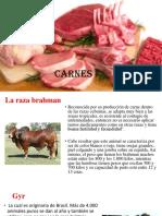 Carne Sale Ja