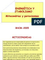 7-MITOCONDRIAS