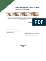 pennacchiotti_g.pdf