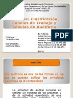 Auditoria, Clasificacion, Papeles de Trabajo y Cedulas de Auditoria