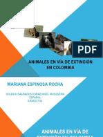 Animales en Vía de Extinción en Colombia