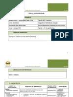 251973135-Plan-de-Apoyo-Individual-PIE.docx