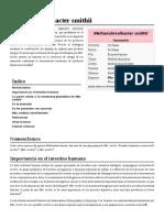 Methanobrevibacter_smithii
