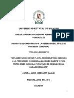 Implementación de una planta agroindustrial dedicada a la producción y comercialización de camote y yuca fritos como snacks alternativos de consumo en la ciudad de Milagro.pdf