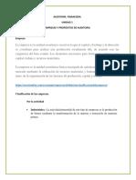 Auditoría Financiera Unidda i