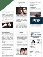 La Violencia Fisica de La Mujer en El Perú Triptico