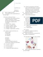 Poríferos, Cnidários e Platelmintos