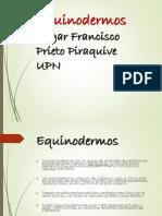 Equinodermos EP