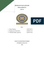 Audit Sap 14