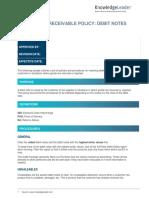 Accounts Receivable Policy - Debit Notes