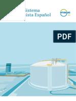 ENAGAS_El Sistema Gasista Español. Informe 2017.pdf