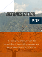 Presentation on Deforestation by Alokik Yadav(17)