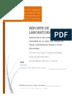 REPORTE-DE-SUELOS-1-2.docx