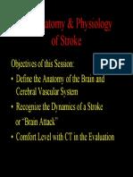01Strok & Anatomy