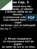 Osea_03+