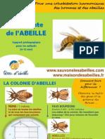 Sur la piste de l'abeille support pédagogique 6-12 ans | Terre d'Abeilles