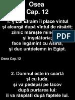 Osea_12+.ppt
