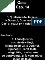 Osea_14+